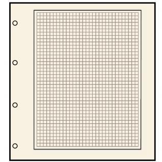 10 SAFE 491 Blankoblätter Compact A4 Chamois mit 4 er Lochung 235 x 305 mm mit schwarzem Rand & zart-grauem Netzdruck