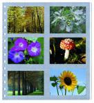 1 x SAFE 676 Einsteckblätter Spezialblätter Fotoblätter Favorit selbstklebend Für 12 Bilder Fotos Photos 9 x13 cm - Ansichtskarten Postkarten