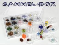 SAFE 5252 Transparente Kleinboxen Setzkasten Kunststoff Universal mit Deckel & 24 Runden Dosen 35 mm Höhe 17 mm