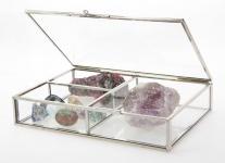 SAFE 5700 Natur Messing Echtglas Sammelvitrinen 20x14x4 cm Für Mineralien - Fossilien - Bernstein