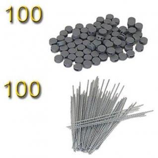 100 Plomben 8 mm + 100 Plombendrähte 100 mm