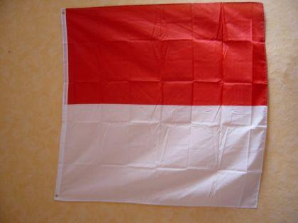 Flagge Fahne Solothurn 120 X 120 Cm - Vorschau