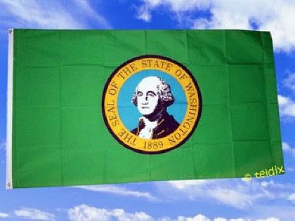 Flagge Fahne WASHINGTON 150 x 90 cm - Vorschau