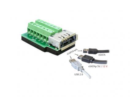 Adapter eSATApd Buchse an Terminalblock 14 Pin, Delock® [65392]