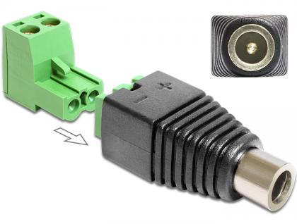 Adapter DC 2, 5 x 5, 5 mm Buchse an Terminalblock 2 Pin, 2-teilig, Delock® [65486]
