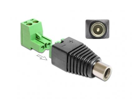 Adapter DC 2, 1 x 5, 5 mm Buchse an Terminalblock 2 Pin 2-teilig, Delock® [65423]