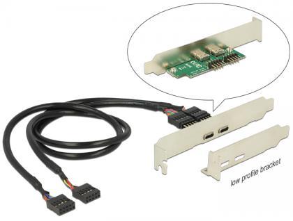 Slotblech 2x USB 2.0 Pinheader 9 Pin intern an 2x USB-C-Buchse extern, Low Profile Form Faktor, Delock® [84754]