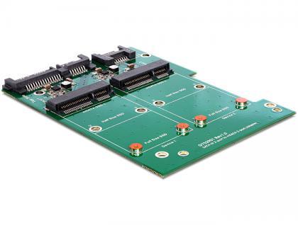 Konverter SATA 22pin an mSATA 2x mit Raid inkl. 3.5' Rahmen, Delock® [62480]