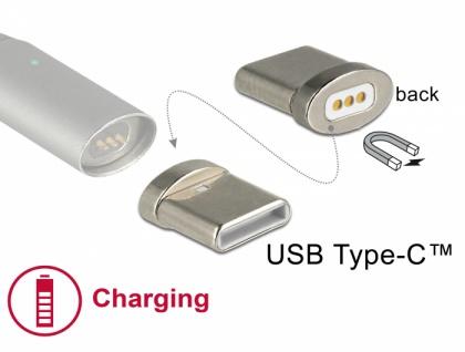 Magnetischer Adapter USB Type-C™ Stecker, Delock® [65930]