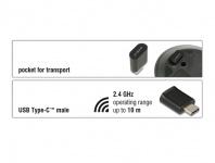 Optische 3-Tasten Mini Maus USB Type-C™ 2, 4 GHz wireless, Delock® [12526]