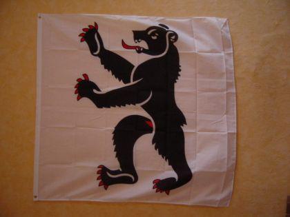 Fahne Flagge APPENZELL INNERRHODEN 120 x 120 cm