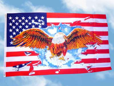 Fahne Flagge AMERIKA USA MIT ADLER 150 x 90 cm