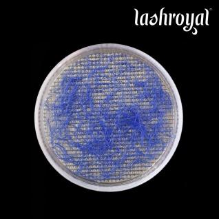 Lashroyal Synthetik PureLashes #blue