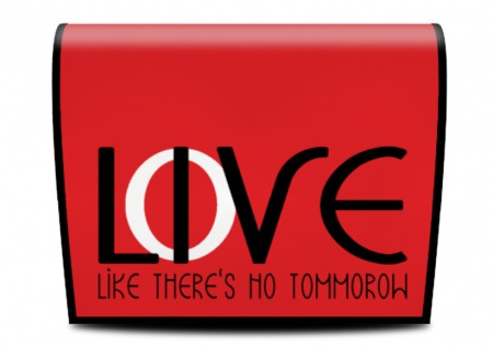Cover für Koala-Bag Tasche Love