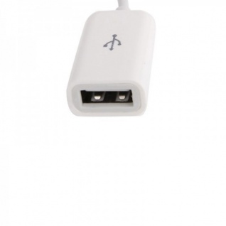 Apple iPhone 5 5S 5C iPad 4 Mini Adapter 8 Polig Kabel auf USB Zubehör Weiß Neu - Vorschau 3