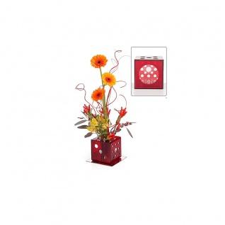 """Blumenvase """" Dekowürfel"""" Dekovase für vielseitige Blumendekorationen 11x11 cm"""