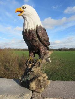 Adler Figur Garten Weißkopfseeadler auf Fels Dekofigur Greifvogel Tierfigur