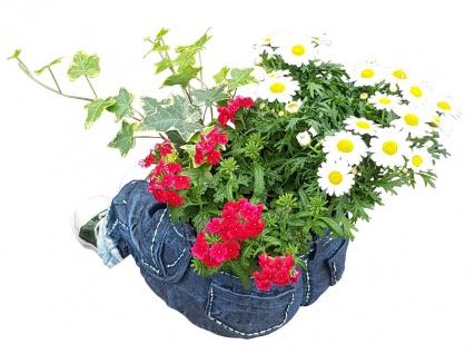 Pflanztopf Kantenhocker zum Bepflanzen lustige Deko Hose Gartendeko Blumentopf - Vorschau 3