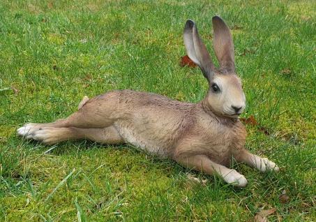 Hase Uwe Dekofigur Feldhase Rammler Kaninchen Gartendeko Ostern Indoor Outdoor
