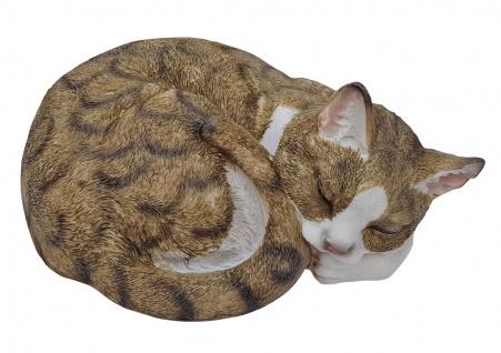 Dekofigur Katze eingerollt schlafend lebensecht Deko In- und Outdoor Tierfigur