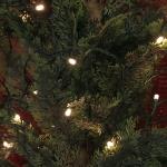 LED-Lichterkette, In- & Outdoor, Weihnachtslichterkette weiß, 80 tgl., NEU