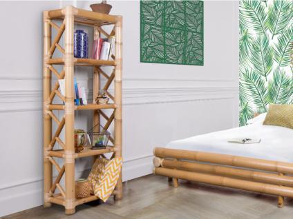Regal Bambus DAHLIA