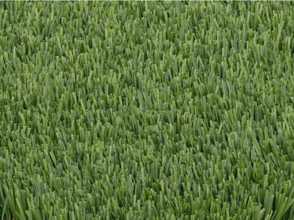 Kunstrasen Polyethylen PAMPA - Dicke: 30 mm - 10m² (2x5m)