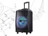 Karaoke Lautsprecher Anlage mobil DANCE von BLACK PANTHER