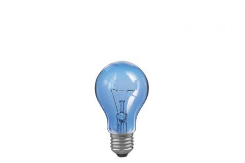 Paulmann Glühlampe Tageslicht 60W E27 105mm 60mm Tageslicht klar