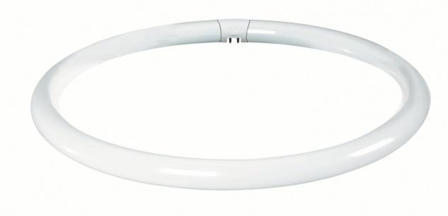 Paulmann 884.32 Leuchtstofflampe Ringform T9 32W G10q 302mm Warmweiß