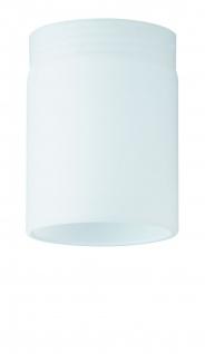 Paulmann Premium Glas DecoSystems Tube Mini Opal/Glas