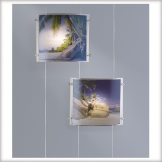 970.97 Paulmann Wire System Foto Trio 5x20W G4 Alu/Transparent 230/12V 105VA Met/Kunststoff