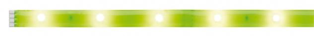 Paulmann 704.83 Function YourLED DECO Stripe Neon Green 1m Warmweiß 2, 4W 12V DC Weiß Kunststoff