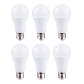 6er Set LED Leuchtmittel 15W E27 5000K Tageslicht 230V 1400lm Weiß satiniert