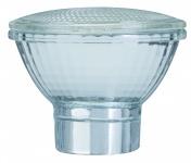 870.10 Paulmann Leuchtmittel Zubehör Glas PAR20 Minihalogen Silber/Klar