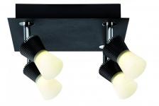 602.03 Paulmann Deckenleuchten Spotlight Konos LED Rondell 4x3W Schwarz 230/12V Metall/Glas