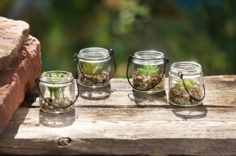 4er Set Deko Glas 'Sukkulente' Vase Tisch Objekt Kunst Pflanze Blume Pflanzen