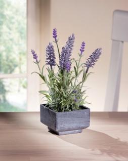 Lavendel Strauch im Deko Topf, Textil Kunst Blume Blüte Pflanze Tisch Fenster