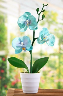 Orchidee im Topf, türkis, 28 cm hoch, Kunst Pflanze Büro Zier Kunststoff Blume