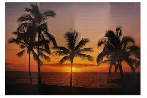 Foto Tapete 368x254 HAWAII Sonnenuntergang Palmen XXL Poster Motiv Wand Bild