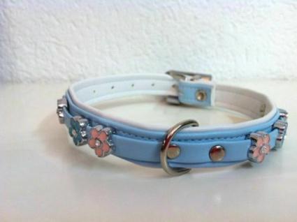 "Hunter Art Leder Hunde Halsband "" Summertime"" hellblau Gr. S 27 cm Halsung"