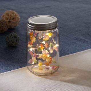 LED Glas 'Muscheln? Lichterkette 10 warmweiß Lichter Innen Beleuchtung Schlauch