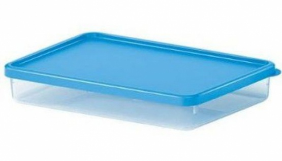 EMSA Snap & Close Frischhalte Dose 2, 4 Liter Vorrats Behälter für Mikrowelle