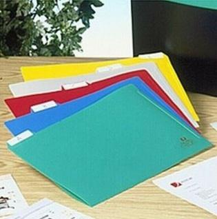 100 Rexel Carry Box Register Aktenhüllen A4, 5 Farben, Sicht Hüllen Sammel Mappe