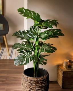 Kunst Pflanze Philodendron 90cm hoch Monstera Fensterblatt künstliche Büro Zier
