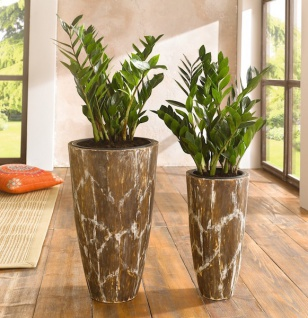 2er bertopf 39 savanne 39 blumentopf braun holz pflanzk bel blumenk bel pflanztopf kaufen bei. Black Bedroom Furniture Sets. Home Design Ideas