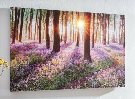 """LED Wand Bild """" Wald"""" 60x40 cm batteriebetrieben, Deko Poster Bäume leuchtend"""