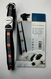LED Hunde Halsband, verstellbar 30 - 45 cm, Sicherheits Leucht Blink Halsung