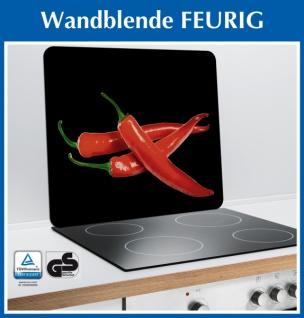 """WENKO Glas Platte """" HOT"""" 56x50 schwarz, Herd Wand Blende Schneid Back Brett"""