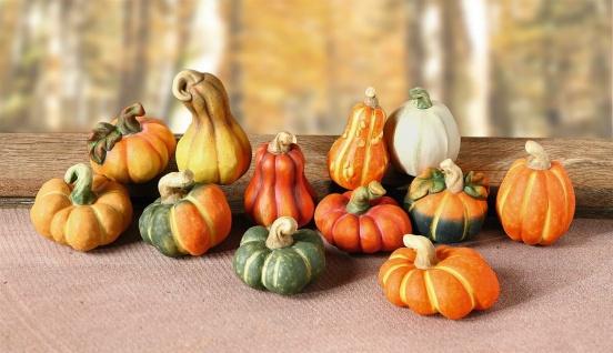 12 Deko Kürbisse aus Terracotta, Halloween Herbst Tisch Dekoration Kürbis